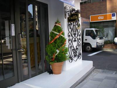 20081216xmastree